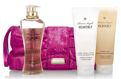 Victorias Secret Dream Gift Bag