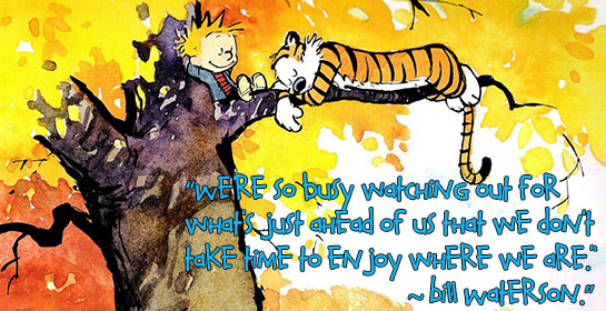 Calvin & Hobbes Living in the Moment